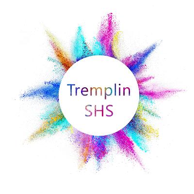 Appel à Projets « Tremplin SHS 2017 » – 2ème édition